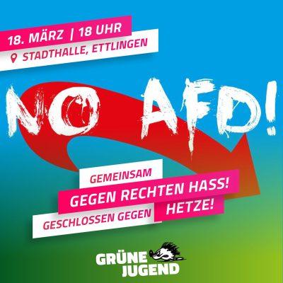 ABGESAGT: Aufruf zur Kundgebung gegen Hass und rechte Hetze - Veranstaltungshinweis Grüne Jugend @ Stadthalle Ettlingen