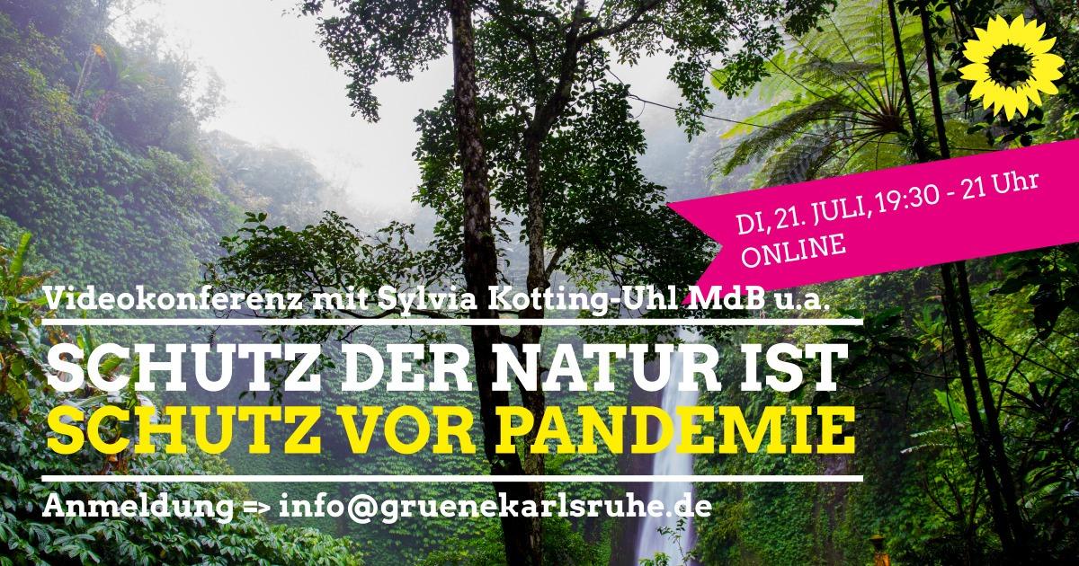Schutz der Natur ist Schutz vor Pandemie – Video-Konferenz mit Sylvia Kotting-Uhl und Gästen