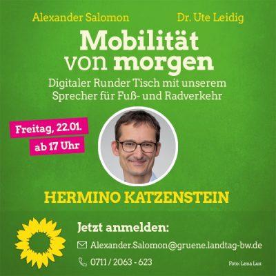 """Digitaler Runder Tisch """"Mobilität von morgen"""" mit Hermino Katzenstein MdL von Ute Leidig und Alex Salomon @ online"""