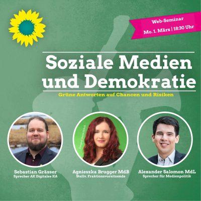 Soziale Medien und Demokratie @ online